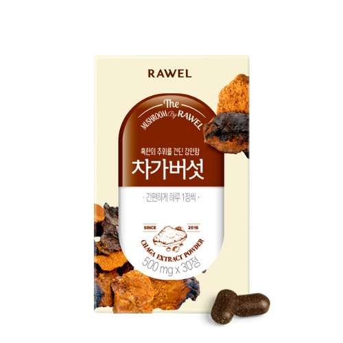 로엘 차가버섯정 Rawel Chaga Extract Powder | 500mg × 30정